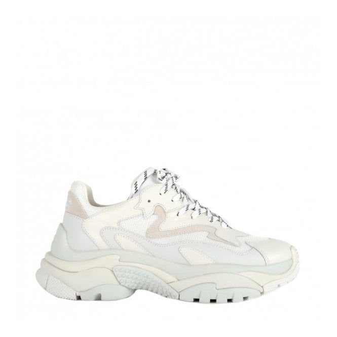 Ash Addict Trainers in Off White Leather and Mesh